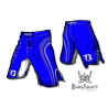 "Booster Fight Gear MMA Shorts \""Pro Shade\\"" blue images, photos, pictures on MMA & Val Tudo Shorts MS-BG-PS01"